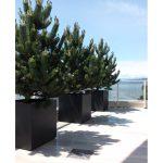 fiberglass black planters