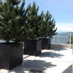 Living Urban Planters Design