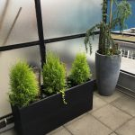 Charcoal planters