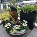 Elemental Gardens
