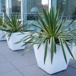 Fiberglass Vincent planter