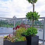 Black fiberglass planters